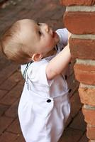 Jack trying to climb the wall